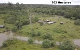 Fazenda a 2 km da BR com título definitivo com 202 hectares