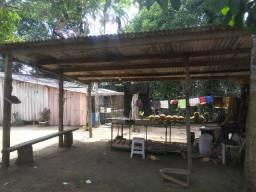 Vendo ou troco por casa em Manaus um sitio na AM010 KM 127. Mais 10KM ramal