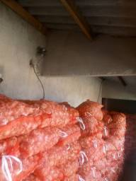 Sacos de alho industria 10kg 75.00