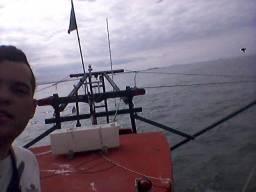 Barco camarão - 2016