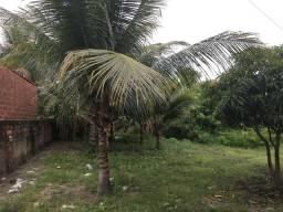 Vende-se ou troca em carro um mini sitio em (Santa Rita) no municipio de Bebelandia