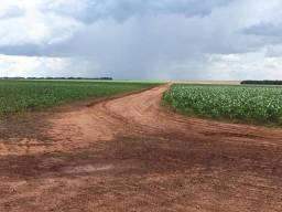 Fazenda em Sorriso à venda, 11036712 m² por R$ 85.000.000 - Centro Norte - Sorriso/MT
