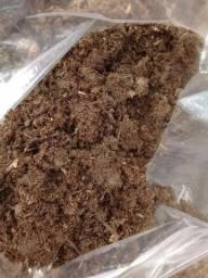 Esterco estrume de Boi Vaca Cru Saco com +/- 40kgs