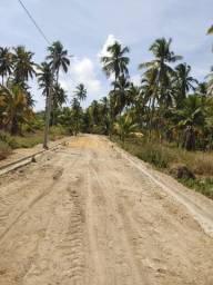 Lotes a 1 km da praia e das falesias de jequia,já pode construir com a 1a parcela!