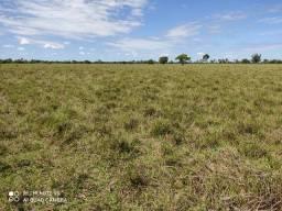 Fazenda 850 hectares em Formoso do Araguaia