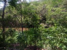 Chácara município de Niquelandia