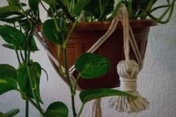 Suporte de planta em Macramê