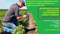 Assistência técnica agronômica