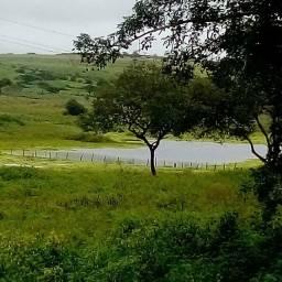Fazenda Lajedo Pernambuco