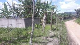 2 hectares $ 70.000em Joaquim Gomes