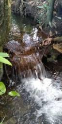 Chácara no Daia com muita água / mina ( Anápolis  )