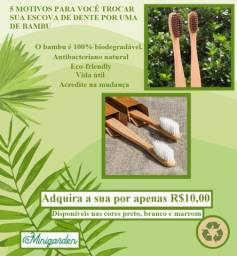 Escova de dentes de bambu, biodegradareis.