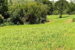 oportunidade para produção rural