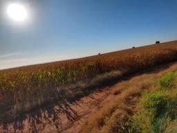 Fazenda Agrícola. 105 Alq. em Montividiu-GO