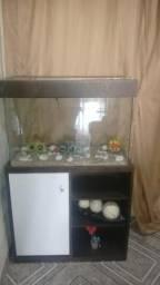 Arquario de peixe