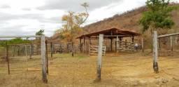 Fazenda 88 alqueires na cidade de Jampruca/MG
