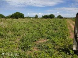 Fazenda 566 hectares em Formoso do Araguaia