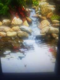 Lago ornamentais  piscinas de alvenaria e fibra de vidro.
