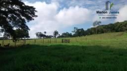 Fazenda em Piracanjuba-Go