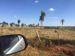 Fazenda em Paranaíba - MS - 394 Alqueires Paulista