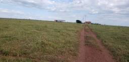 Fazenda 785 ha Pecuária