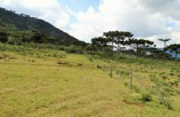 Fazenda com 180 ha na Serra Catarinense