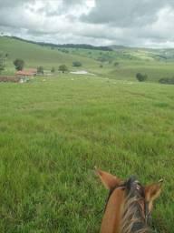 Vendo Fazenda 112hect , Santana do Mandaú