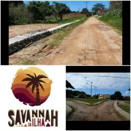 Título do anúncio: Terrenos na Ilha