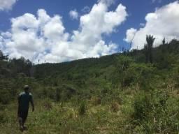 Fazenda 213 hectares Belmonte Ba