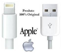 Cabo original Apple 2 metros