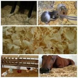 Raspa de madeira de pinus - Saúde e higiene para seu animal!