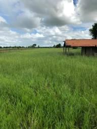 Ágio de Chácara Tarumã Trindade Goiás