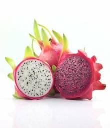 Pitaya poupa vermelha ou Branca 1 kg