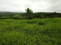 Fazenda 70 Alqueires região Cocalzinho Boa para Pecuaria