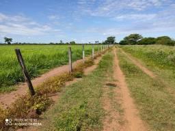 Fazenda 678 hectares em Formoso do Araguaia