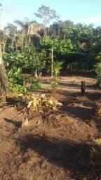 Vendo terreno 50×70 no lago do limão com casa 7×6.Valor 40.000