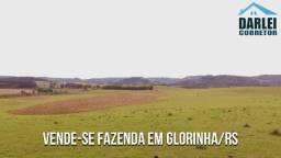 Fazenda em Glorinha de Alta Qualidade 82Ha ou Vende Parcial. Peça o Vídeo Aéreo