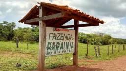 Arrendamento Fazenda Baraúna -7.052 Ha