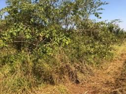 14 alqueires em Tangará da Serra- MT, aceito permuta e carro Tangará da Serra -MT