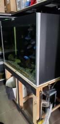 Aquario 430 litros