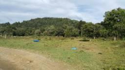 Terreno de 30.000m2 para chácara em Campo Alegre