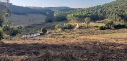 Fazendao 126 hectares