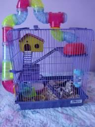 VENDO hamster com gaiola (casinha)