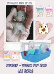 Título do anúncio: Hamster + gaiola de transporte . Leia abaixo