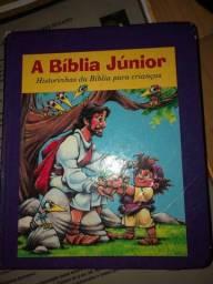 Vendo Bíblia Junior