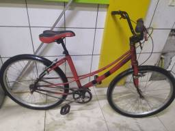 Bike quadro cesi