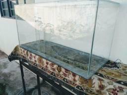 Aquario 200 litro