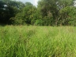 Chácara em Cezarina próximo ao Casarão 80 km de Goiânia