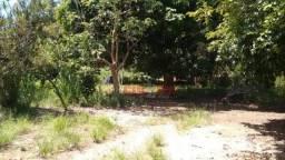 Sítio à venda, 3500 m² por R$ 200.000,00 - Bananal (Ponta Negra) - Maricá/RJ