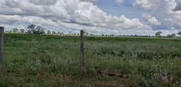Fazenda 3.200 ha